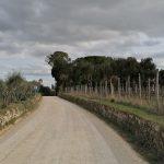 Eroica Gaiole: de mini Chianti route